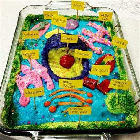 plant cell cake model model animal cell cake cake models animal