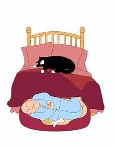 Можно ли завести кошку при псориазе