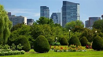 Boston Common in Boston, Massachusetts   Expedia