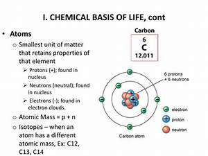 Chapter 12 Chemical Basis Of Genetics Interpreting Diagrams Answers