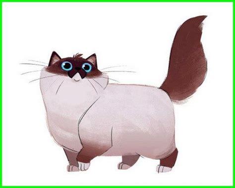 wallpaper laptop kucing animasi