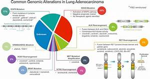 Common Genomic Alterations Recommended For Inclusion In A