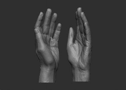 Hand 3d Female Elderly Stl Models Cgtrader