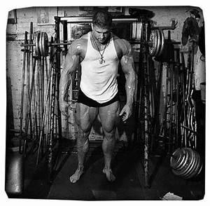 Wie Lange Sollte Man Kontoauszüge Aufheben : muskelaufbau wie lange wie oft fitness checker ~ Lizthompson.info Haus und Dekorationen