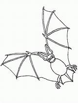 Bat Coloring Coloringpages1001 sketch template