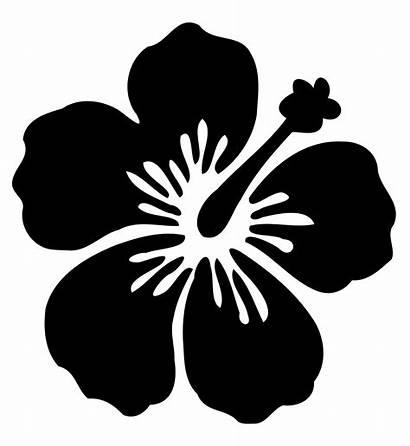 Svg Flower01 Wikimedia Commons