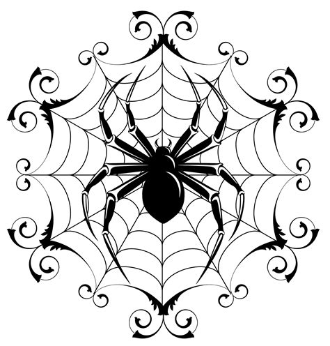 spider web drawing with spider spider drawing clipart best