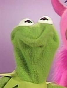 Image Gallery kermit the frog pissed