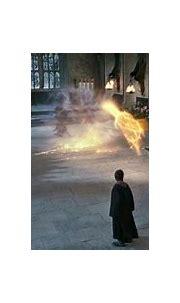 Image - McGonagall vs Snape.jpg | Harry Potter Wiki ...
