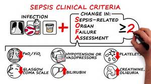 consensus definitions for sepsis and septic shock youtube