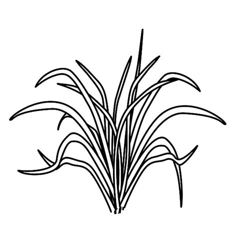 Coloring Grass by Animal Food Grass Coloring Pages Color