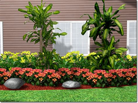 amazing landscaping plants  landscape design plants