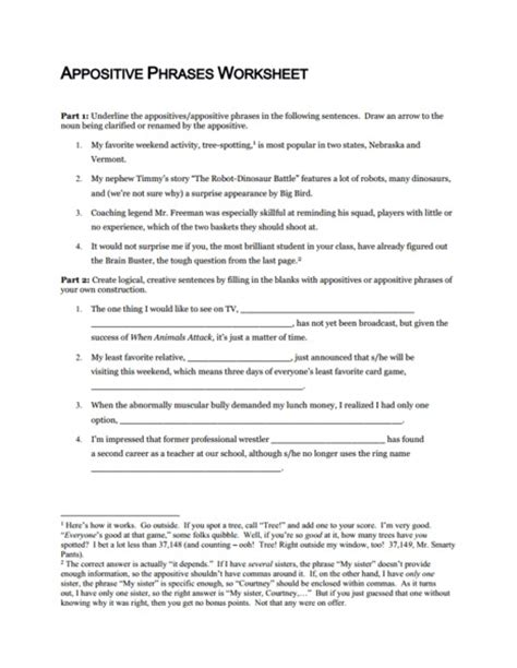 commas with appositives worksheet free worksheets library