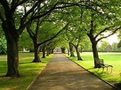 Homestead Park, York - Picture of The Homestead, York ...