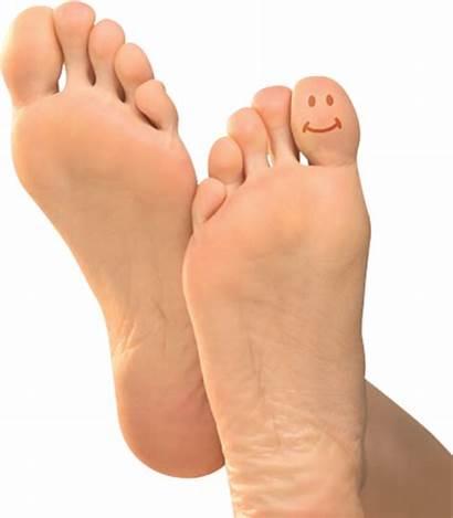 Clipart Toe Legs Foot Transparent Leg Clip