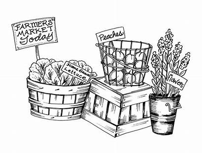 Farmers Market Clipart Farm Stand Coloring Pages