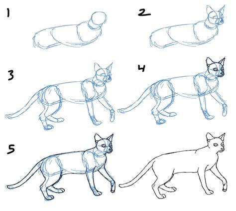savanna williams   draw cat bodies  poses