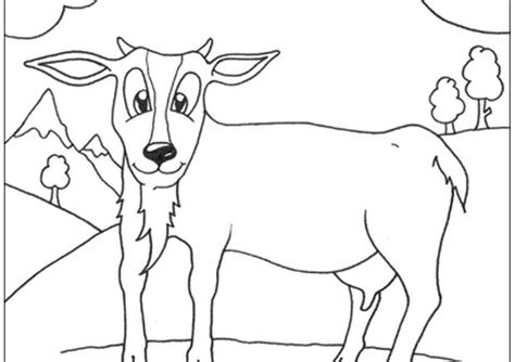 printable animals coloring pages sheets coloring pages part