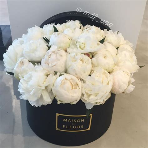 25 best ideas about white peonies on white