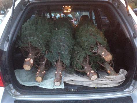 washougal christmas tree farm farrell farms llc 98671 washougal 3000 se 362nd ave