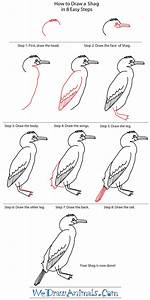How To Draw A Shag