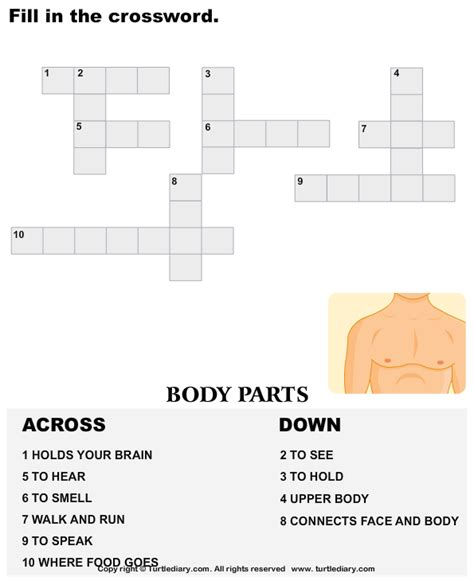 complete  crossword body parts worksheet turtle diary