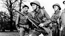 Carry on:Kopf hoch -Brust raus | Film 1958 | Moviebreak.de