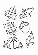 Coloring Acorns Leaves Autumn Pages Printable Leaf Sheets Parentune Child Assignment Flowers sketch template