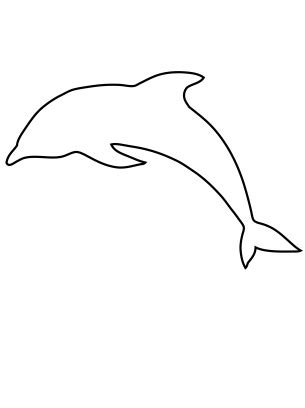 dolphin template dolphin activities template