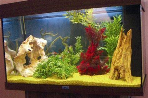 d 233 coration aquarium fait maison