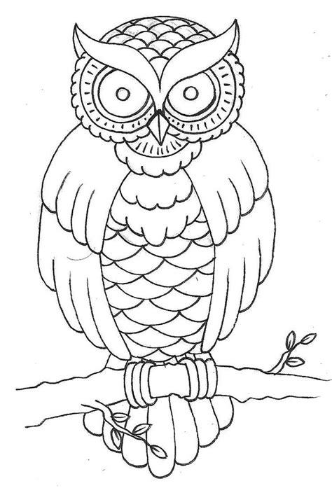 owl outline drawing outline picture of owl coloring europe travel