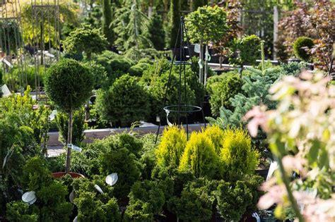Garten Und Landschaftsbau Aufgaben by Garten Und Landschaftsbau Baumschule Obojes