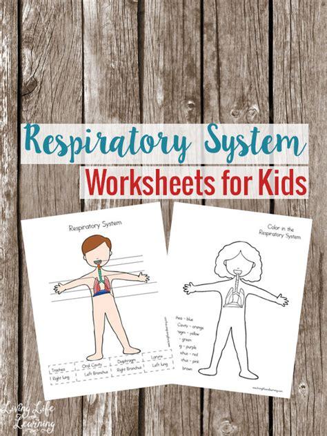 respiratory worksheets  kids  homeschool deals