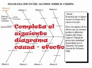 Sedevi  Diagramas Causa Y Efecto