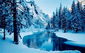Nature, Trees, Snow, Mountain, Wallpapers, Hd, Desktop, And