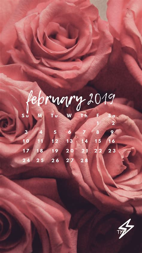 iphone or android february 2019 wallpaper s
