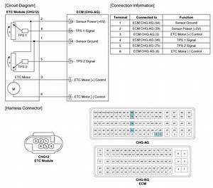 Hyundai Sonata  Etc  Electronic Throttle Control  System  Schematic Diagrams