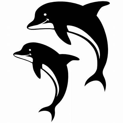 Dolphins Dolphin Sticker Decals Smiling Stickers Water