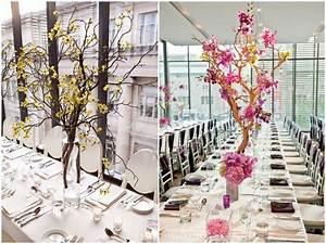 Manzanita Branches for Weddings