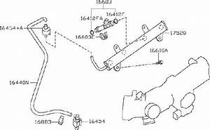 Nissan Altima Fuel Injector  Piping  Engine  Hose