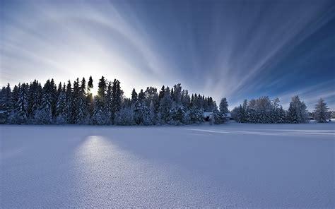 plain snow surface    nature photography