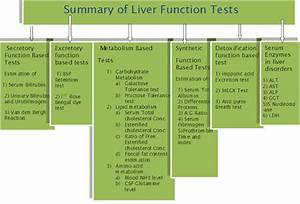 Society For Medical Laboratory Science  Sri Lanka  Liver