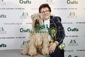 Crufts 2009 Best of Breed Winner SOFT COATED WHEATEN ...