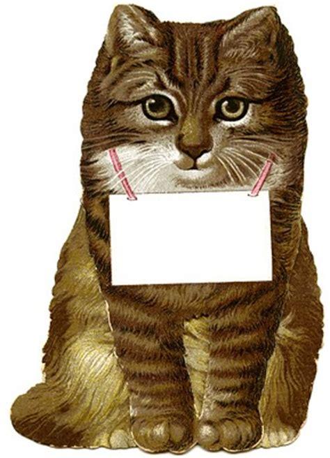 vintage clip art cutest cat image   graphics fairy