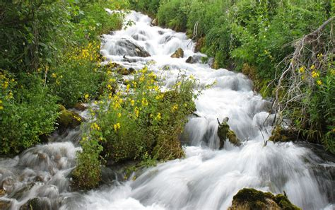 utahs watershed restoration initiative announces projects