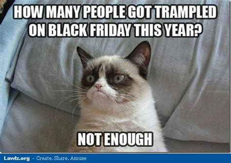 Grumpy Cat Friday Meme - song and pic page 3 ryl forums