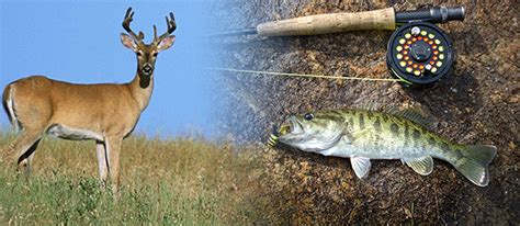Hunting and Fishing Licenses  Georgia Department of