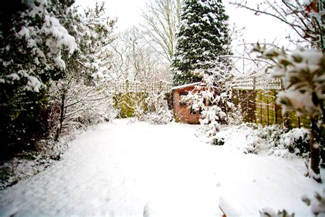 Gardeners Winter by Gardeners 10 Ways To Beat The Winter Blues Laurie March