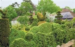 Yew Topiary Shapes