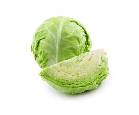 cuisiner un chou vert chou vert mara 238 chers l l